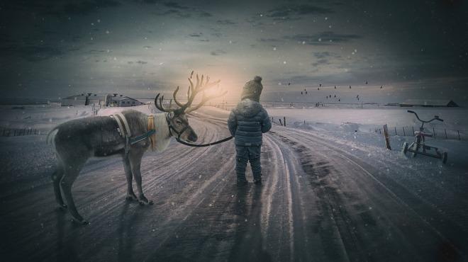 Life and the Svalbard reindeer - Masterflex Hoses